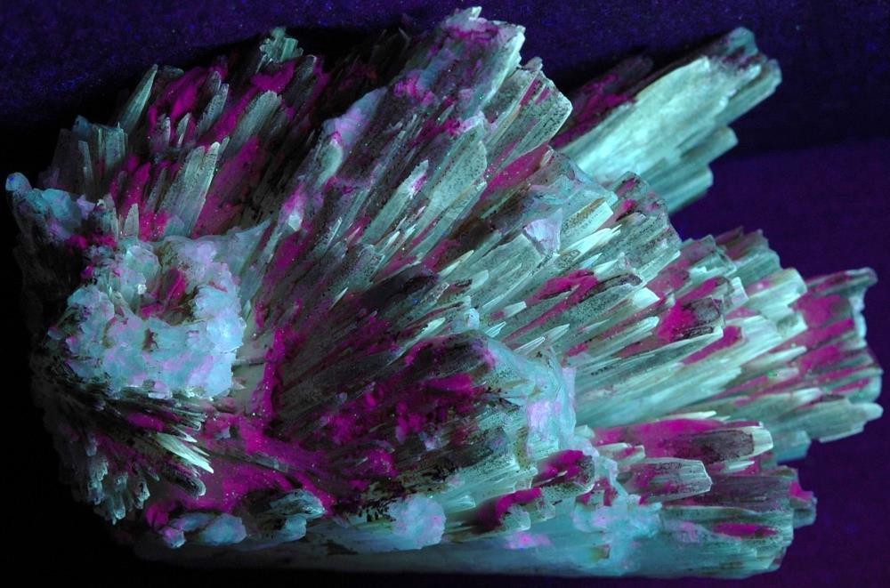 Aragonite crystals on matrix from the Sterling Hill Mine under shortwave UV Light