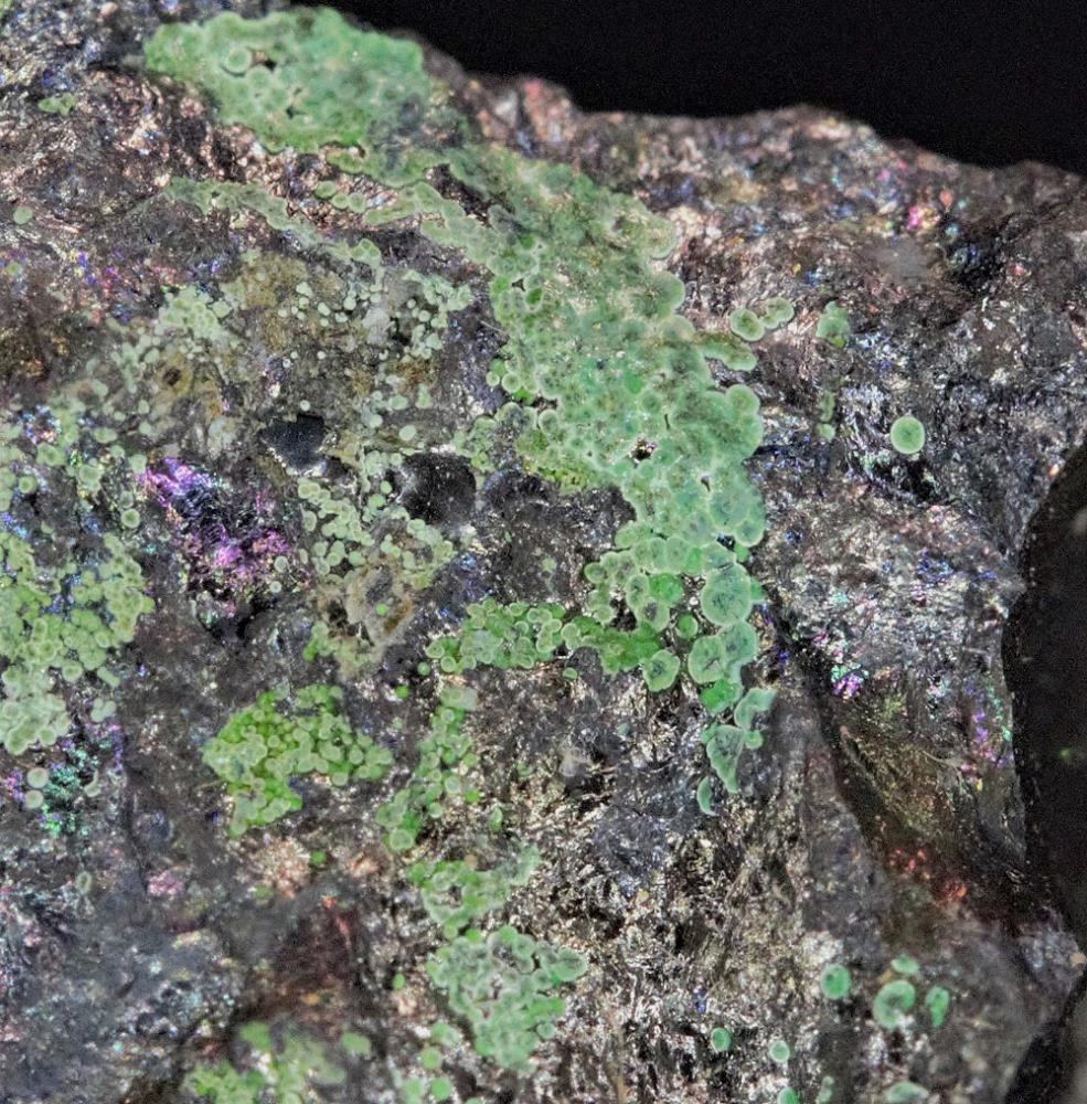 Brochantite on chalcocite matrix from Franklin, NJ
