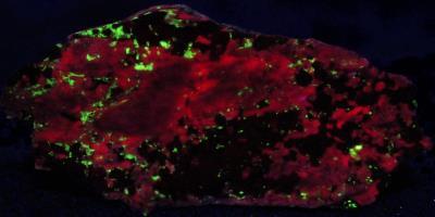Bustamite, andradite garnet and minor willemite from Franklin, NJ under longwave UV Light