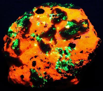 Bustamite crystals, calcite, hendricksite mica with minor andradite garnet, willemite and franklinite from Franklin, NJ under shortwave UV Light
