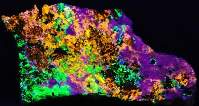 Clinohedrite, hardystonite, willemite, andradite garnet and franklinite from Franklin, NJ under shortwave UV Light