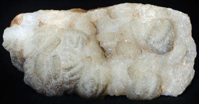 Maggot-ore hemimorphite from Sterling Hill Mine, NJ