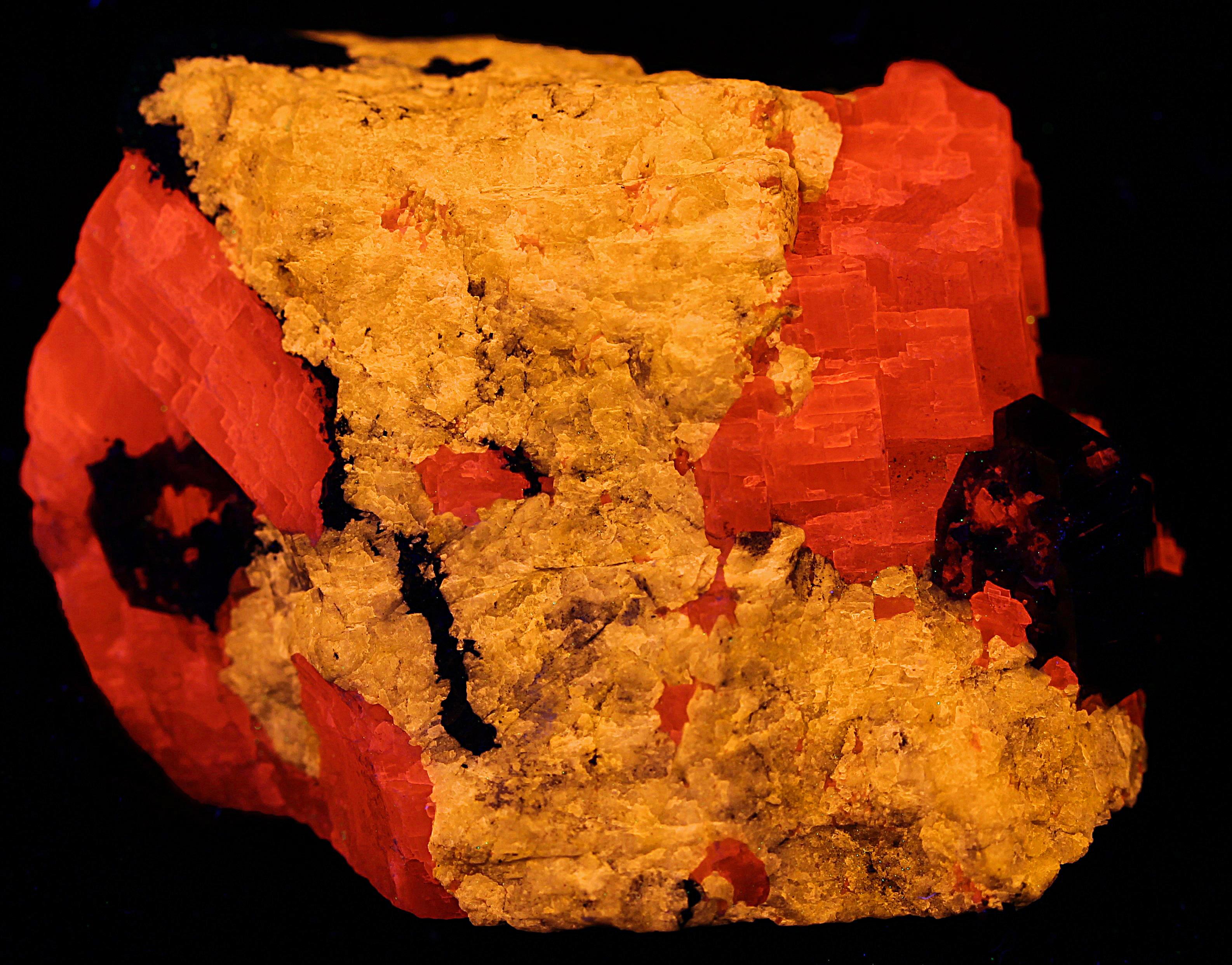 Turneaureite, calcite, andradite garnet, and franklinite from Franklin, NJ under shortwave UV Light